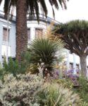 Jardines con plantas autóctonas. Facultad de Educación