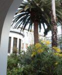 Jardín del patio porticado. Facultad de Educación