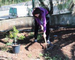 Prácticas de plantación