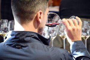 curso de análisis sensorial de vinos