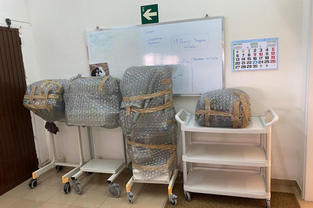 La Universidad de La Laguna cede temporalmente al hospital de La Palma cuatro respiradores