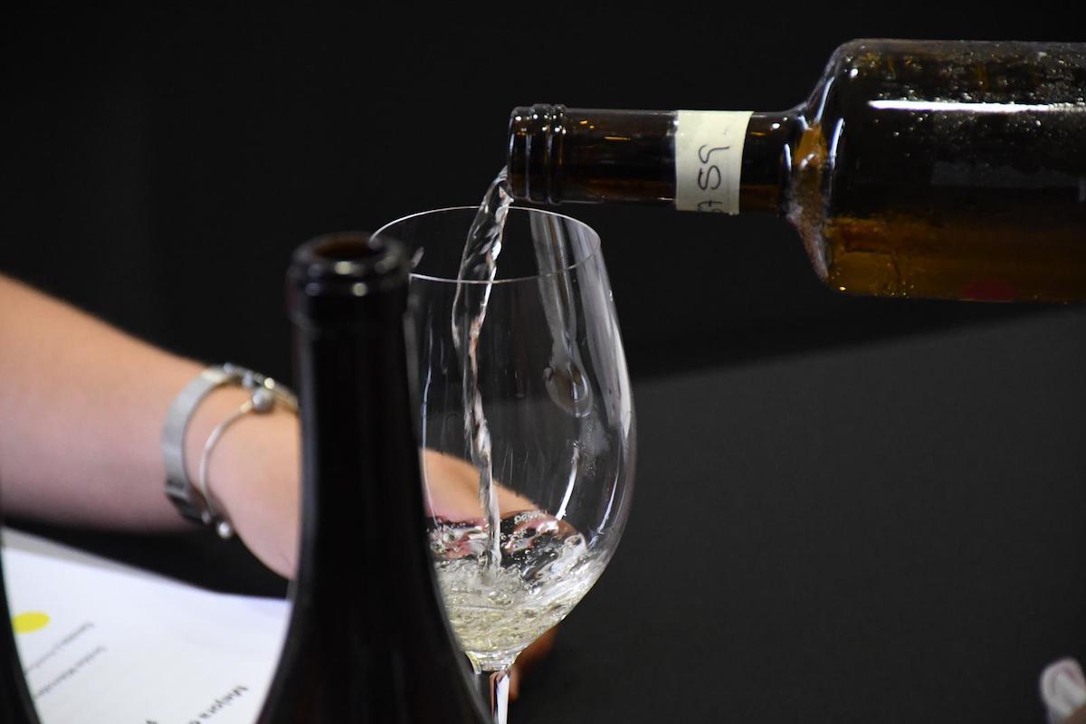 Imagen alusica a este taller de cata sobre varietales canarios de vino.